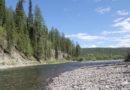 Кто тебя переведет через ту реку?